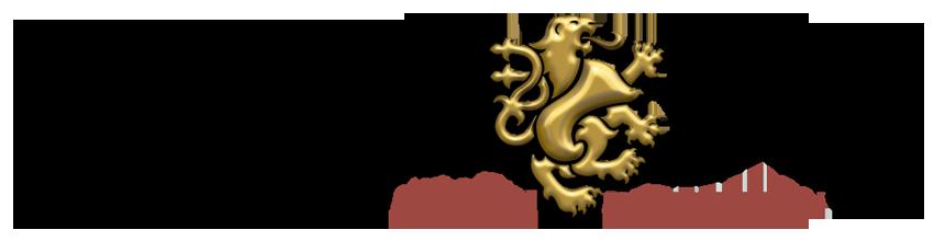 analyse-risk_logo